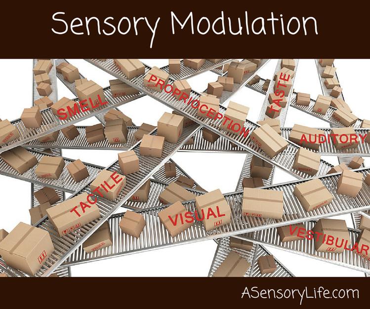 Sensory Modulation A Sensory Life